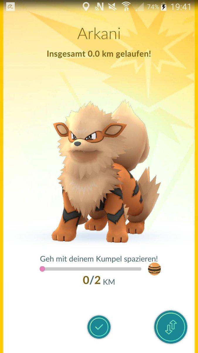 kumpel pokemon go level